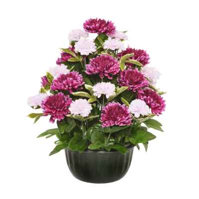 38CM PURPLE CHRYSANTHEMUM FOLIAGE X 29 IN POT