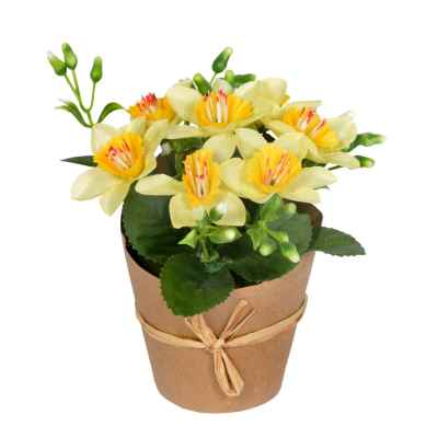 14CM ASSORTED SPRING POTS IN WRAP
