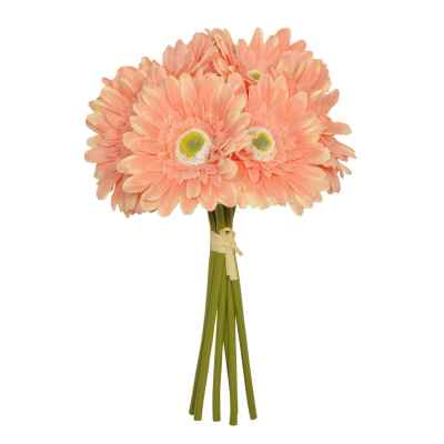 30CM CORAL GERBERA X 6 HAND TIED
