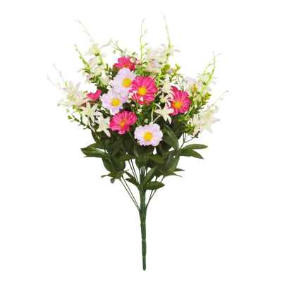 50CM STAR FLOWER COSMOS X 16 BOUQUET