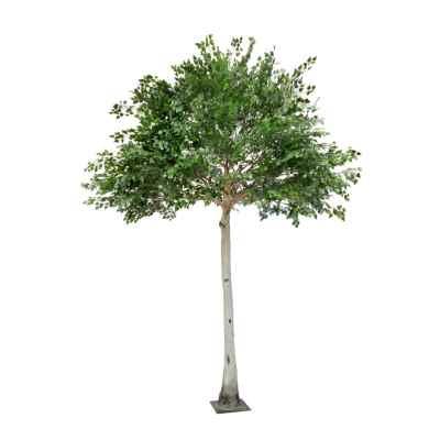 360CM (280cm) BIRCH TREE (36 Branch)