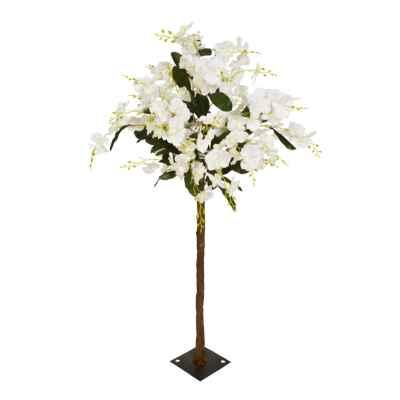 140CM CREAM ORCHID TREE