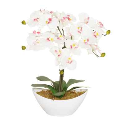 50CM PINK ORCHID X 6 IN OVAL POT