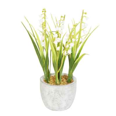 23CM LILY OF THE VALLEY IN POT