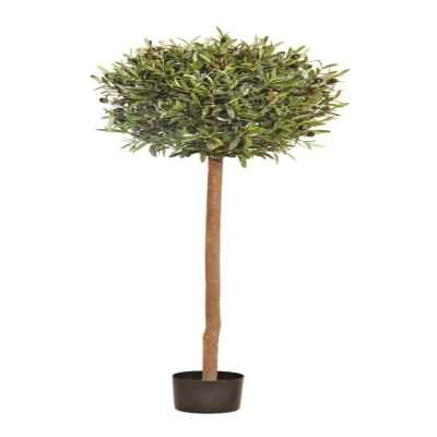 150X50CM OLIVE TOPIARY TREE IN POT