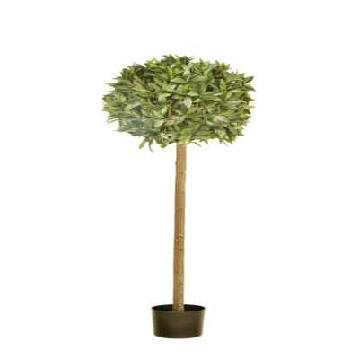 140X45CM BAY TOPIARY IN POT (888 LEAF)