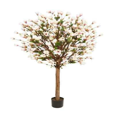 205CM PINK MAGNOLIA TREE IN POT