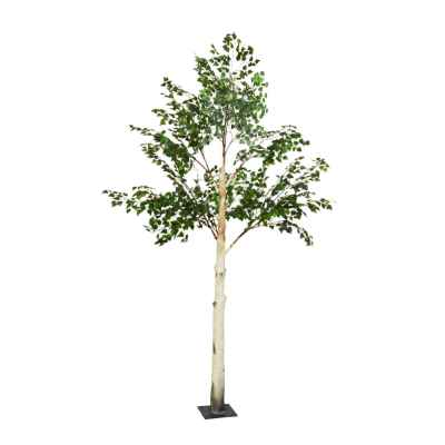 300CM BIRCH TREE