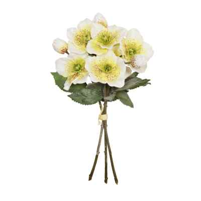 34CM HELEBORES X 3 HAND TIED