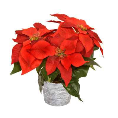 30CM RED POINSETTIA X 3 IN STONE EFFECT POT